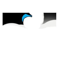 ccc_logo_200px_rev