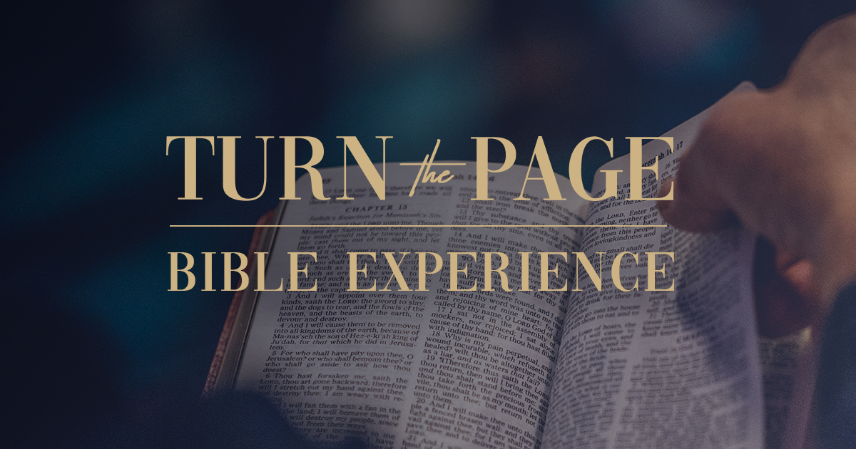 ttp-bible-experience-rectangle-simple